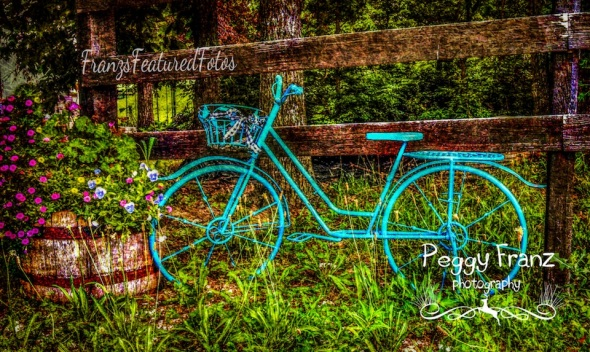 old bike hdr name- soft name