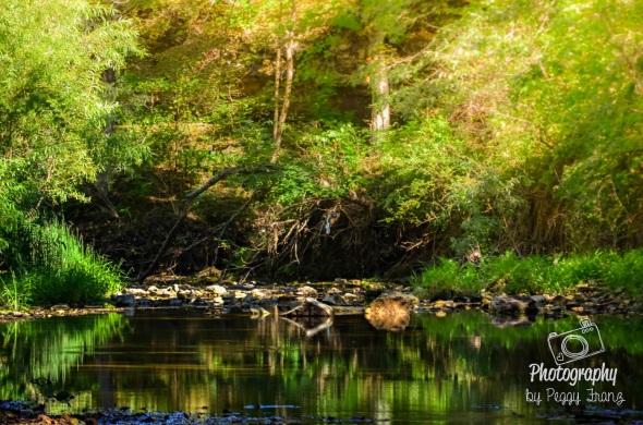 Reflection Of the Sandy Creek under the Bridge