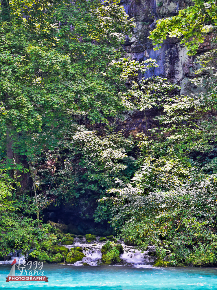 DSC_0077-Edit-Edit-1 NAME big springs
